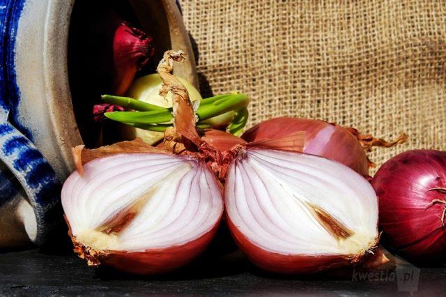 napar z łupin cebuli