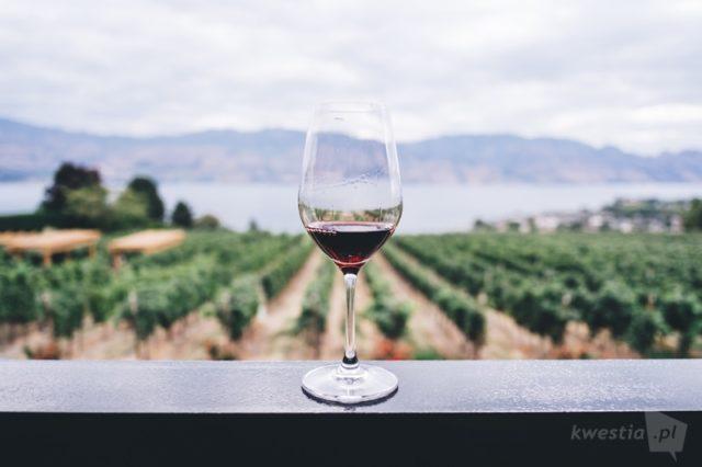 Winoterapia