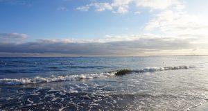 Bakterie w wodach Bałtyku