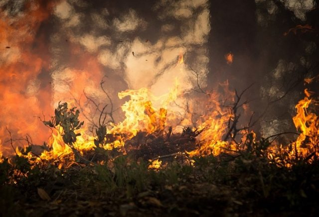 Pożary w Grecji